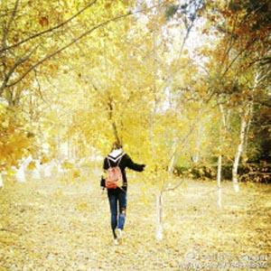秋天唯美女生背景图片  秋去冬来,青春易逝